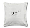 """Outdoor Pillow 20"""" Square"""