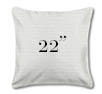 """Outdoor Pillow 22"""" Square"""